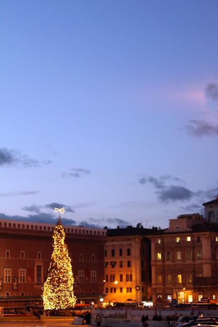 Albero di Natale a piazza Venezia-Roma