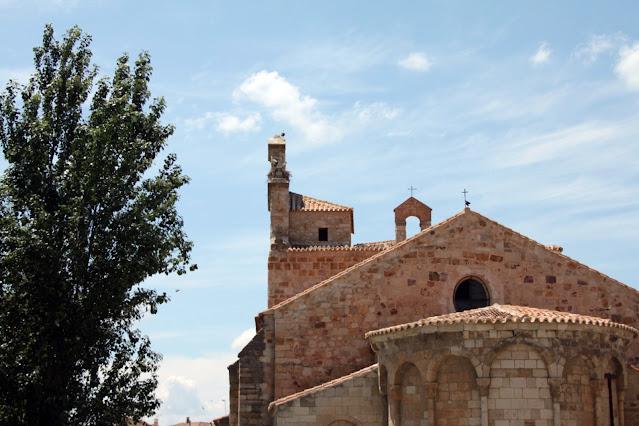 Cicogne su tetto di una chiesa-Zamora