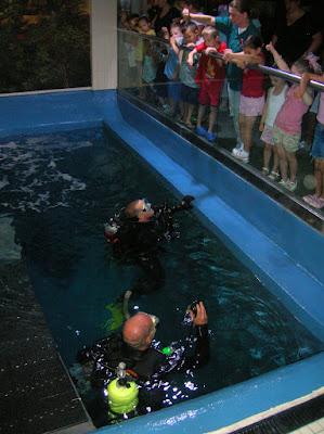 New Jersey Aquarium Coupons Reviews Adventure Aquarium