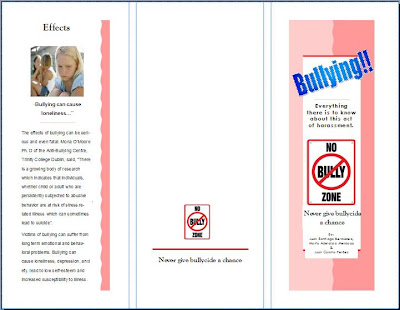 Bullying Brochure Ideal Vistalist Co