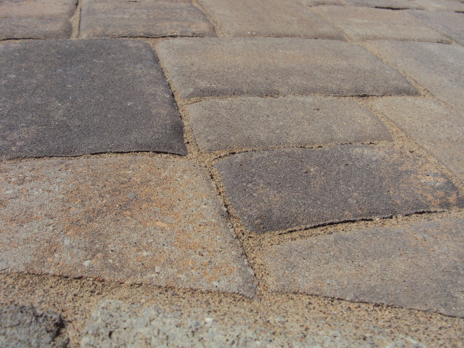 Portly Groundskeeper: Summer Project: Paver Patio