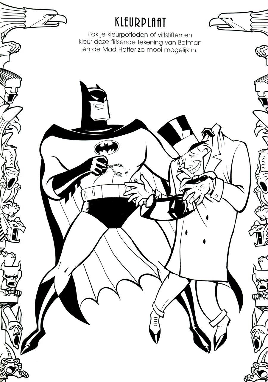 het verzameloord animated batman 3 batman junior