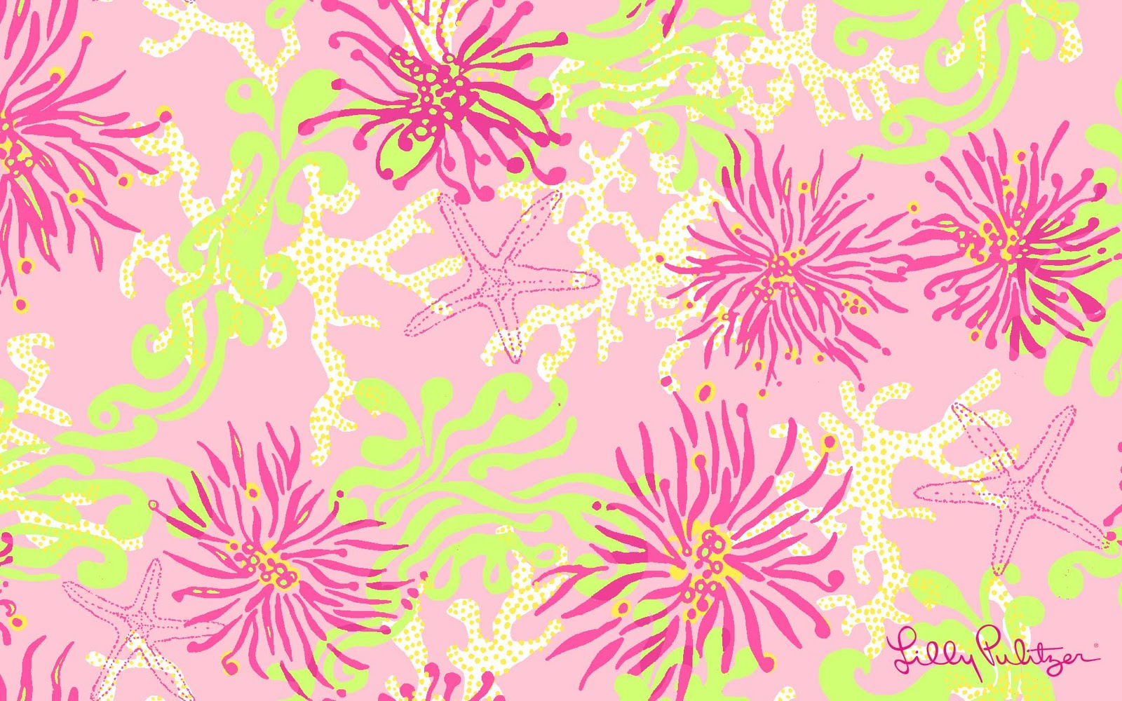 CanadianPrep: Lilly Desktop Wallpaper