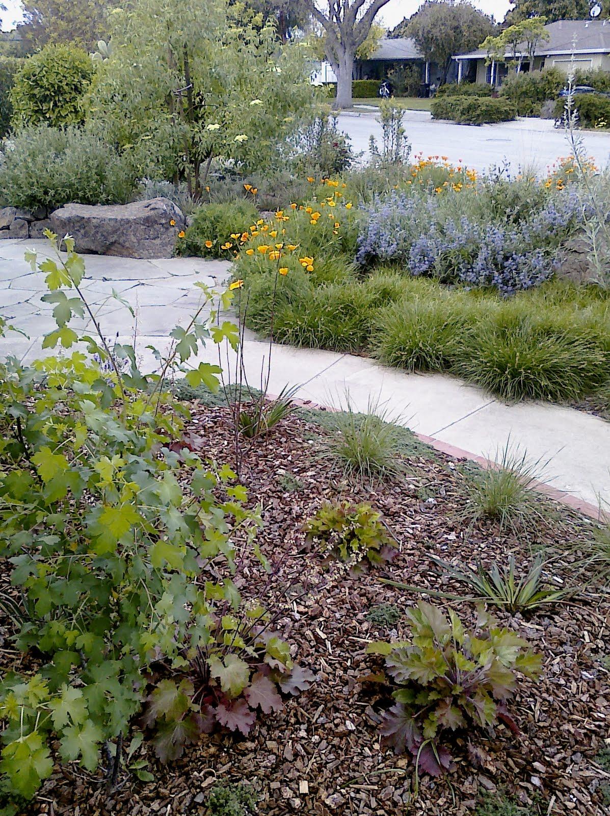 Life s garden sunnyvale garden ftempo - Olive garden apartments sunnyvale ...