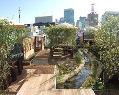 Roof Terrace Before After Smart Cities Dive