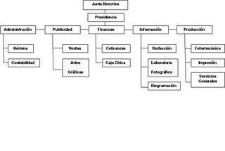 Organizacion Organización Lineo Funcional