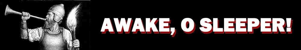 parablesblog: AWAKE, O SLEEPER!