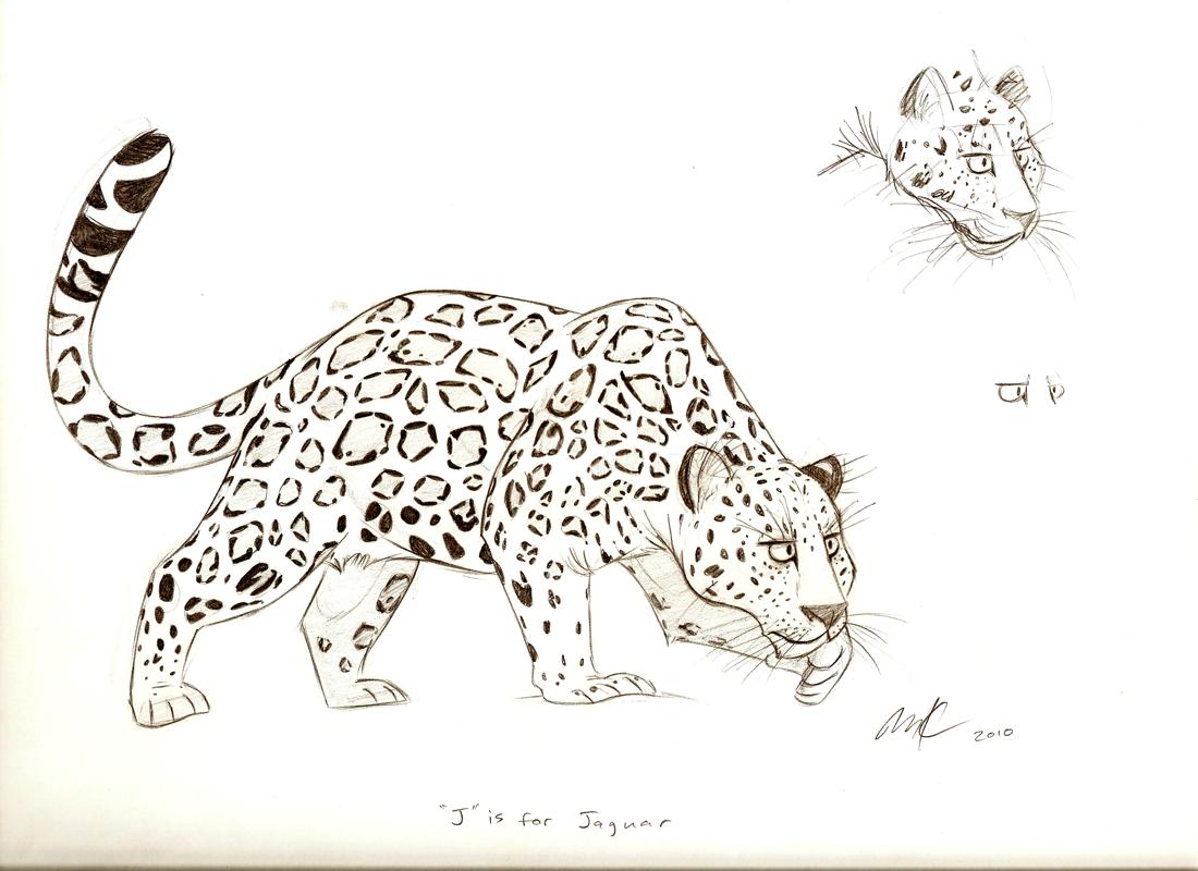 jaguar drawing - photo #17