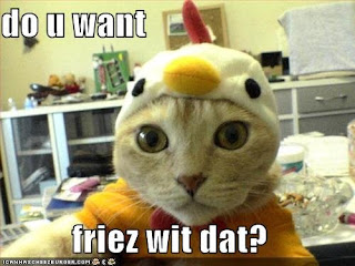 LolCats Image You Want Friez Wif Dat