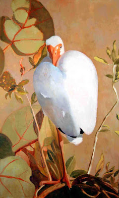 White ibis by Judith Vivell