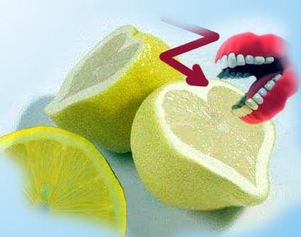 südfrüchte übersicht