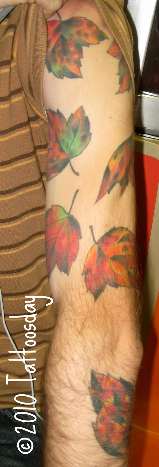 Tattoo steve 39 s sleeve of leaves ushers in the fall season for Steve s tattoo