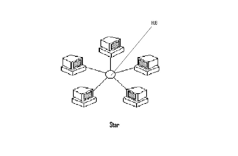 E-Commerce: Basic Network Topologies:Bus, Star and Ring