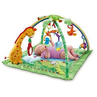 Review Best Product Rainforest Jumperoo Recall