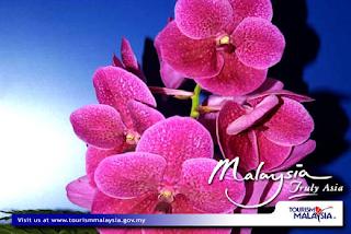 Malaysia advertisement