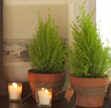 Craftily Ever After Pottery Barn Inspired Potted Pines