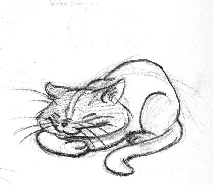 Adam Boklund: Cat doodles