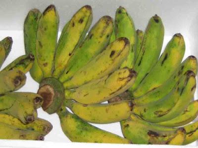 http://3.bp.blogspot.com/_ZktBAp4QCWY/SJ6cUDXKxKI/AAAAAAAAAC0/5vf1Hnz7vYk/s200/Banana+king.JPG