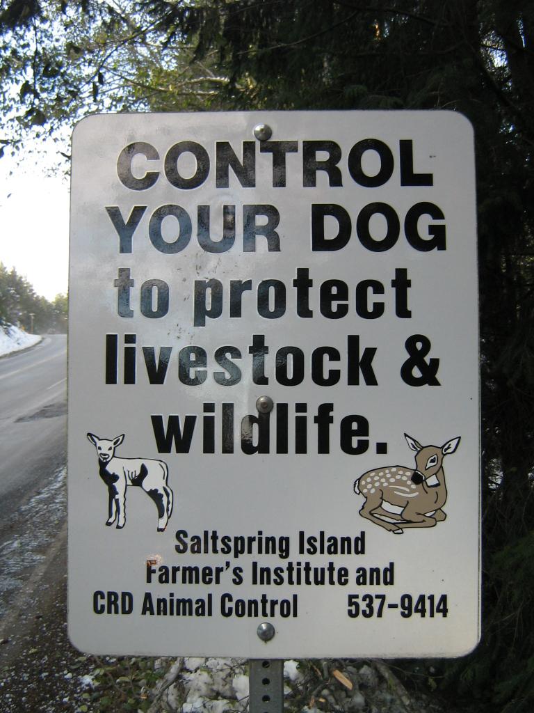 Canadian Sheep Breeders Association