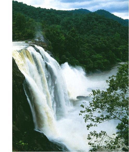 Monsoon Holidays In Kerala: Discover Of India: KERALA