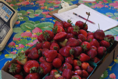 berries at swanton farms