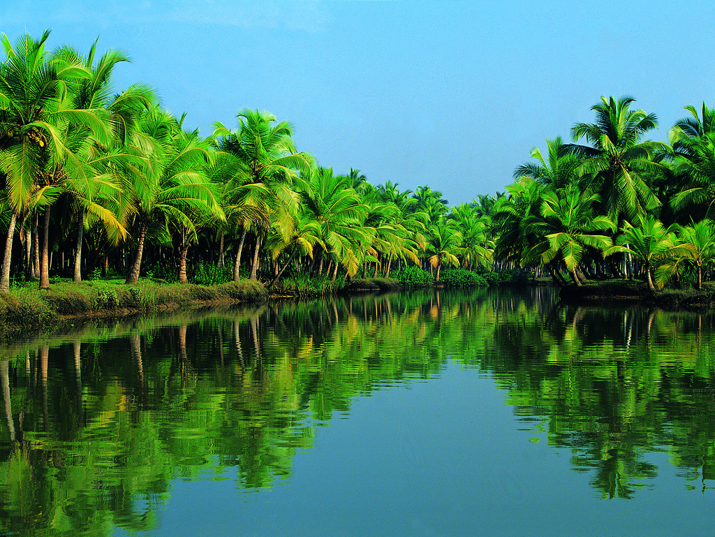 India Travel Packages From Bangladesh
