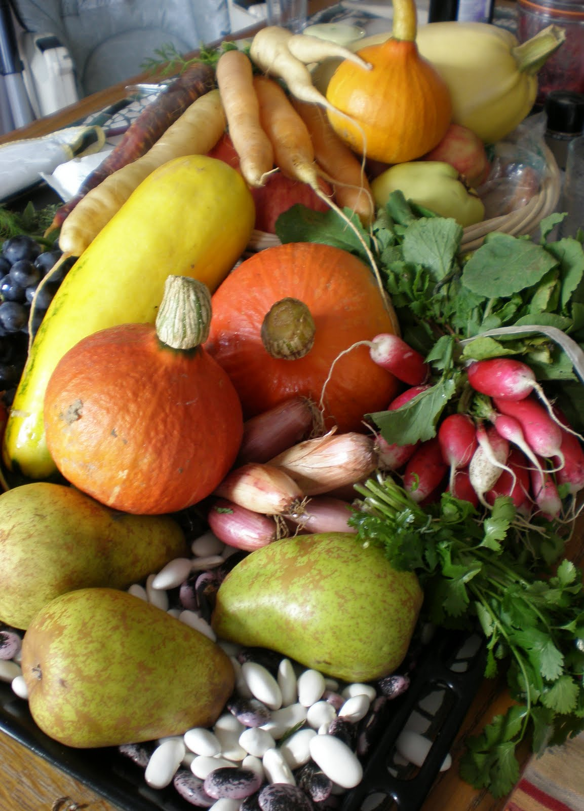Kabağın Yararları, Türleri ve Vitaminleri