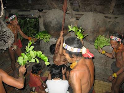 brommel: Life and death on Siberut Island