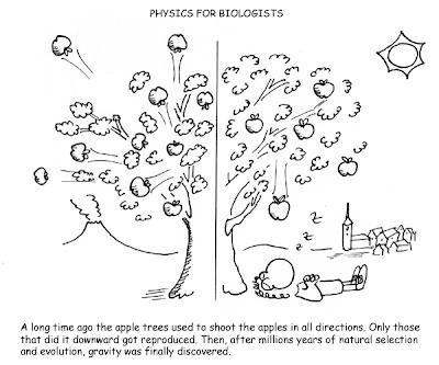 Space Scarab: Biology vs. Physics