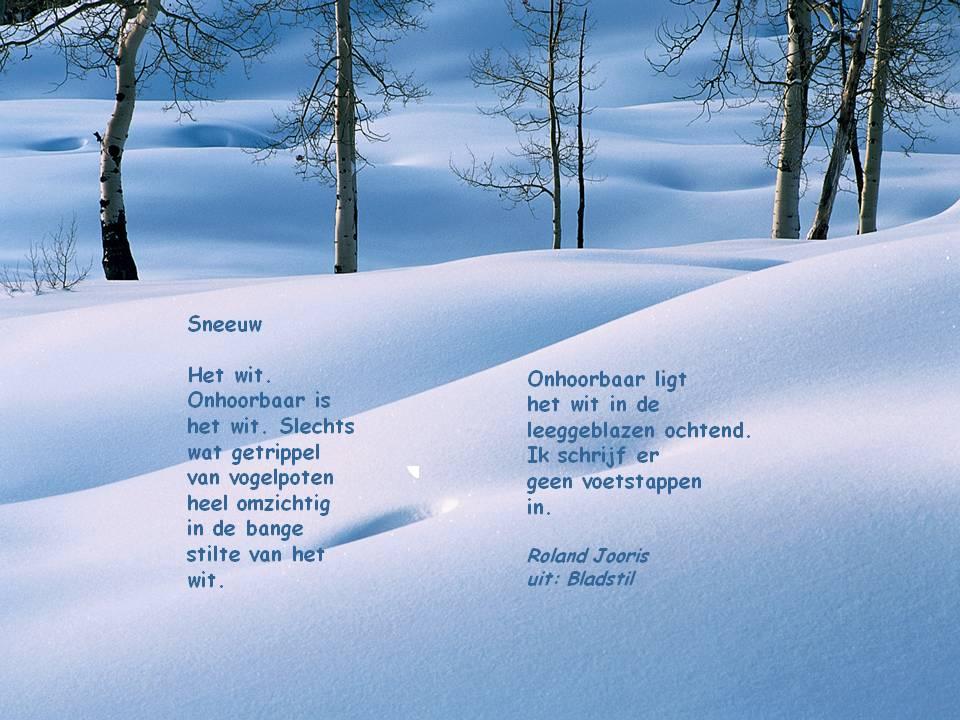 herman de coninck winter