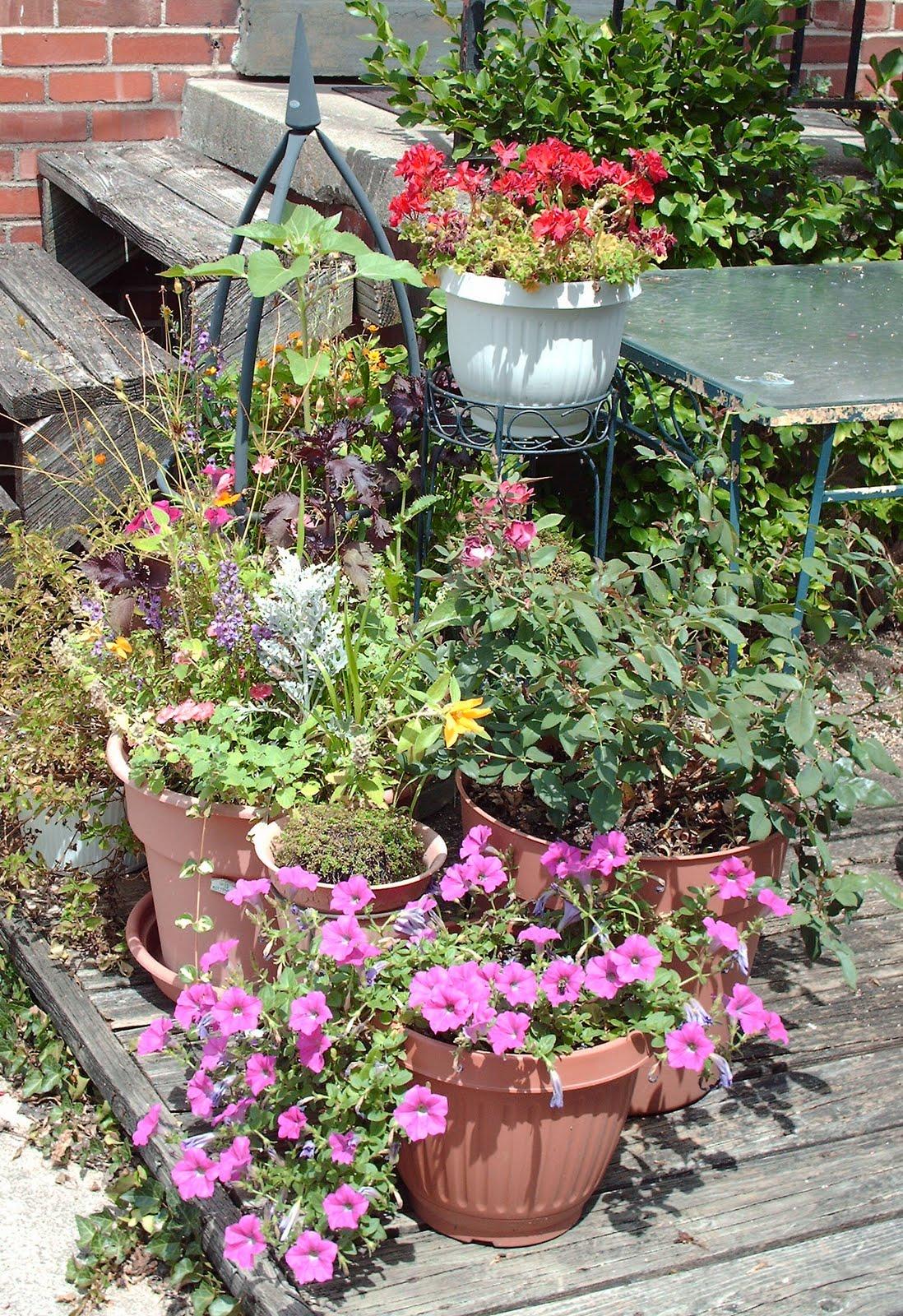 My Secret Garden: Vintage Gran: My Secret Garden Part Two