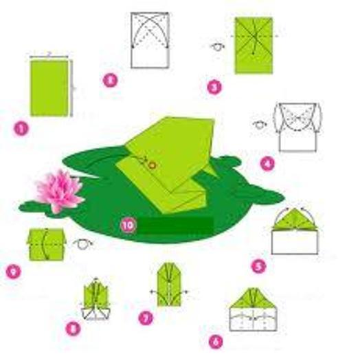 Origami Frog Making