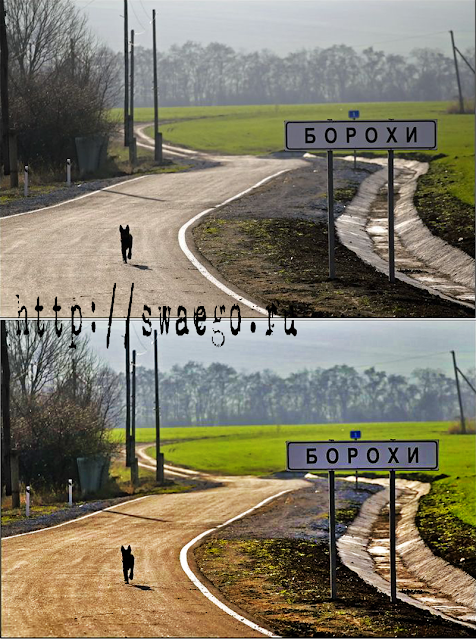 Как быстро улучшить качество фотографии в Photoshop CS5 ?