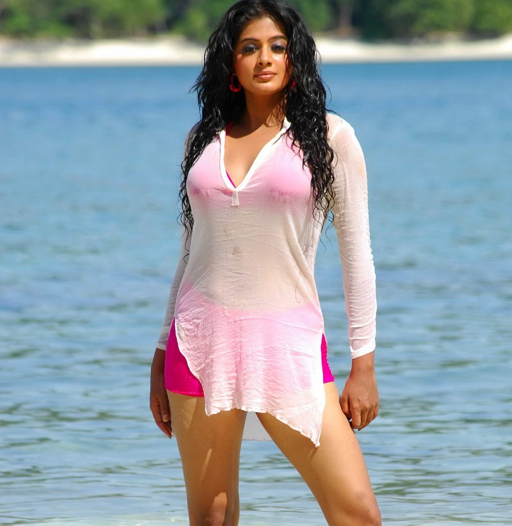 Spicy Priyamani S Hot And Sexy Pictures Collections