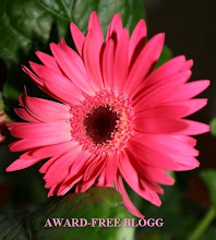Award-free blogg
