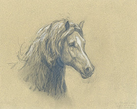 Arte Realista De Takiguthi Desenho De Caderno 6