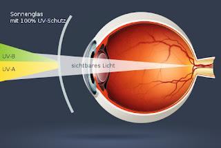 Blickkontakt: Sonne gesund genieen