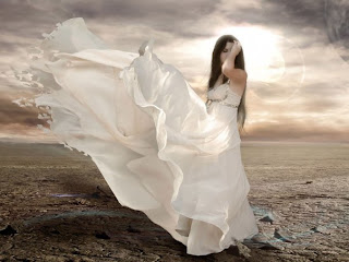 I'm a Phoenix: Broken Angel