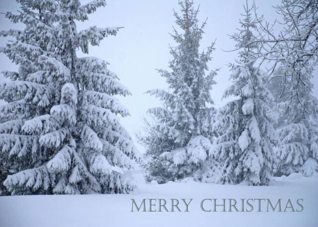 Christmas scenes with quotes quotesgram - Christmas nature wallpaper ...