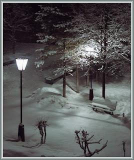 Зимняя ночь в городском парке.