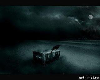 Ворона сидит на сундуке на берегу ночного моря.