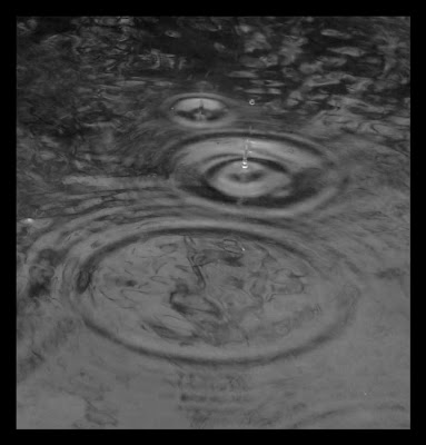 Капли дождя в луже.