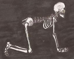 heavy metal yogi 88 yoga skeletons ah ah ah