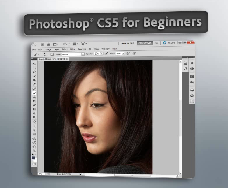 adobe photoshop cs5 tutorials beginners pdf free download