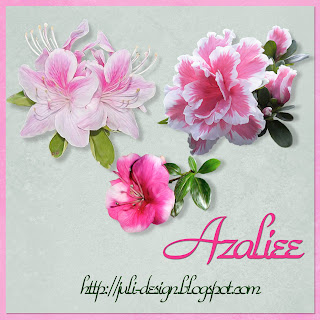 http://3.bp.blogspot.com/_aRi-tMojkUY/S_VZimAFFVI/AAAAAAAAAcU/mbARiHnDU9c/s320/Azaliee+by+Juli-design.jpg
