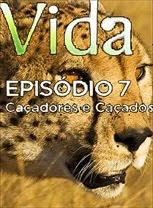 Vida - Episódio 7: Caçadores e Caçados - DVDRip Legendado