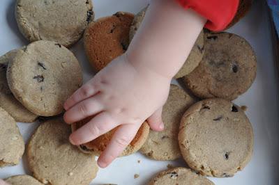 Gluten-Free, Nut-Free Toddler Snack Cookies