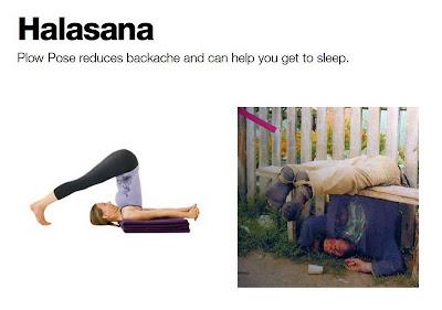 yoga saved my life  charlotte hilton andersen