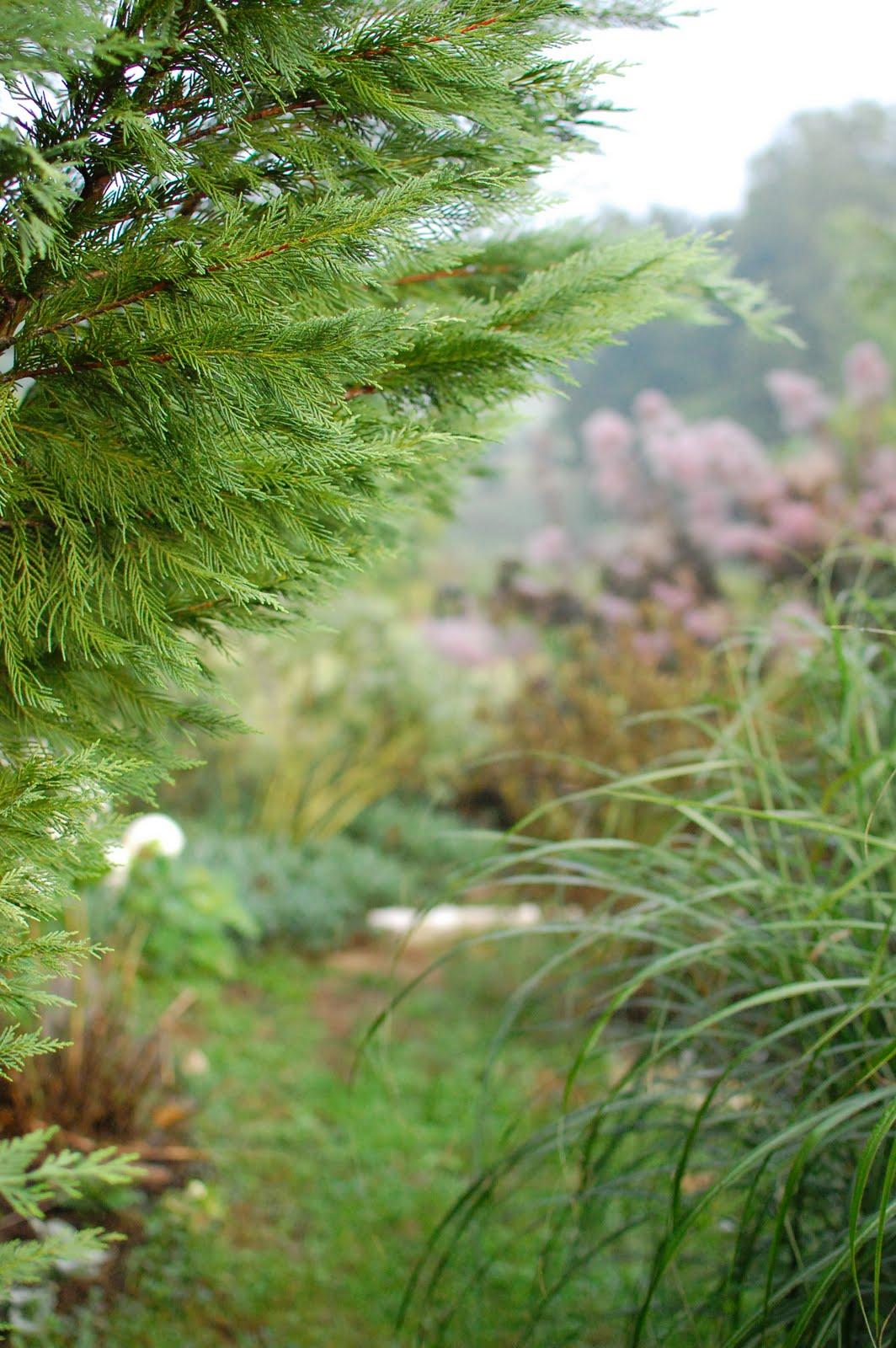 Pennsylvania Perennial Garden