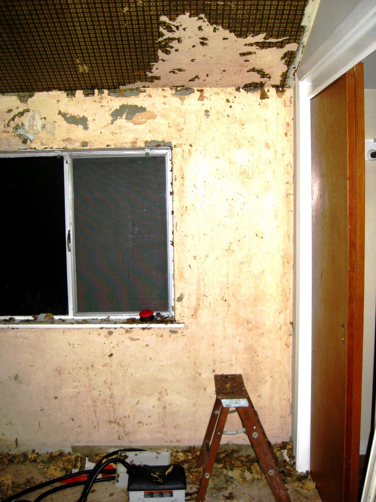 picodur: Wallpaper on Old Plaster Walls: Wallpaper Steamer, Peeling Paint, and ...